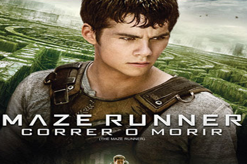 maze runner dvd bluray